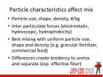 particle characteristics affect mix