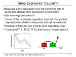 gene expression causality