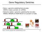 gene regulatory switches