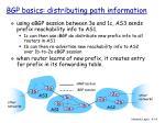 bgp basics distributing path information