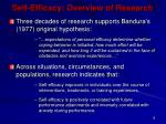self efficacy overview of research