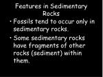 features in sedimentary rocks