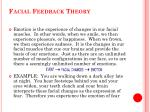 facial feedback theory