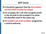 bgp issues