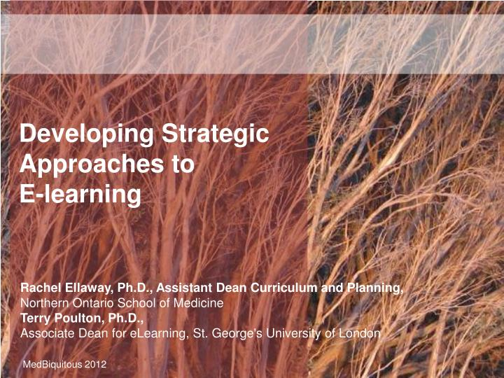 developing strategic approaches to e learning n.