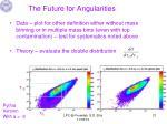 the future for angularities