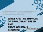 what are the impacts of broadband speed and price on small business