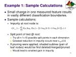 example 1 sample calculations