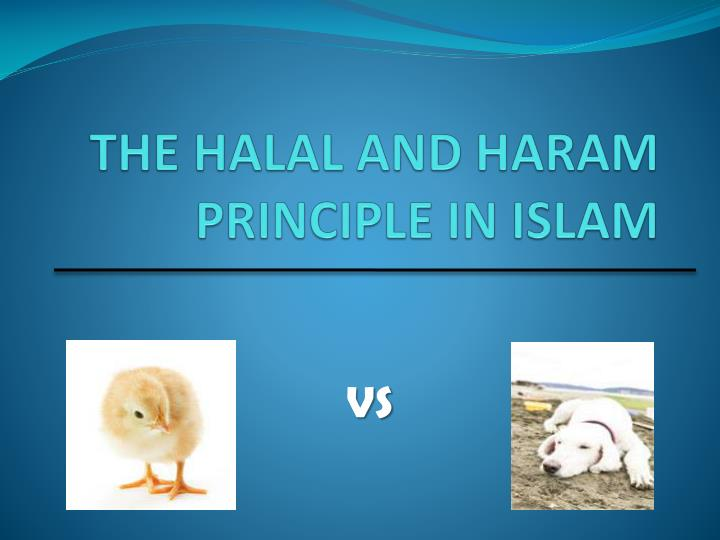 the halal and haram principle in islam n.