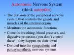 autonomic nervous system think autopilot