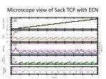 microscope view of sack tcp with ecn