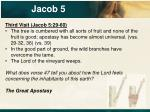 jacob 526