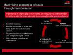 maximising economies of scale through harmonisation