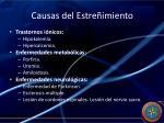 causas del estre imiento1