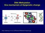 dna methylation one mechanism of e pigenetic change