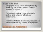 section 3 addiction1