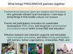 what brings prolinnova partners together