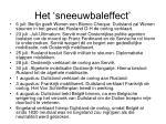 het sneeuwbaleffect