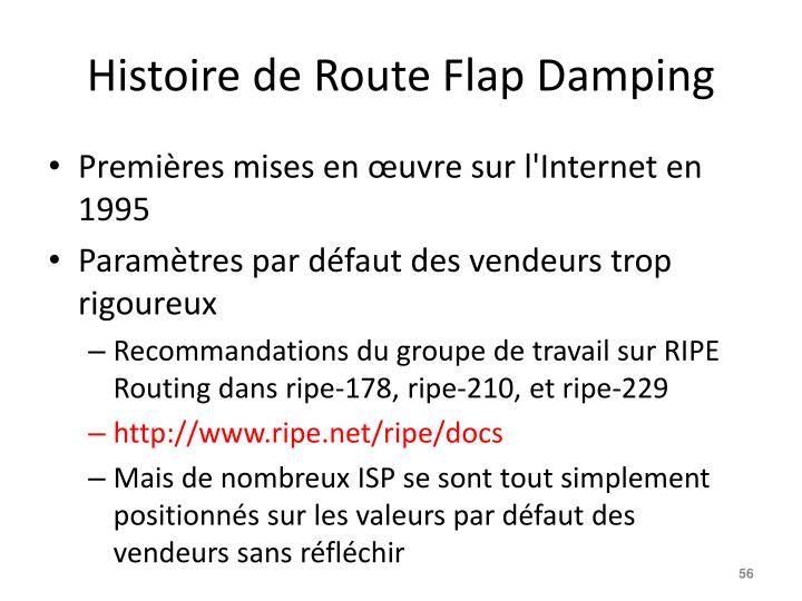 Histoire de Route Flap Damping