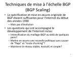 techniques de mise l chelle bgp bgp scaling