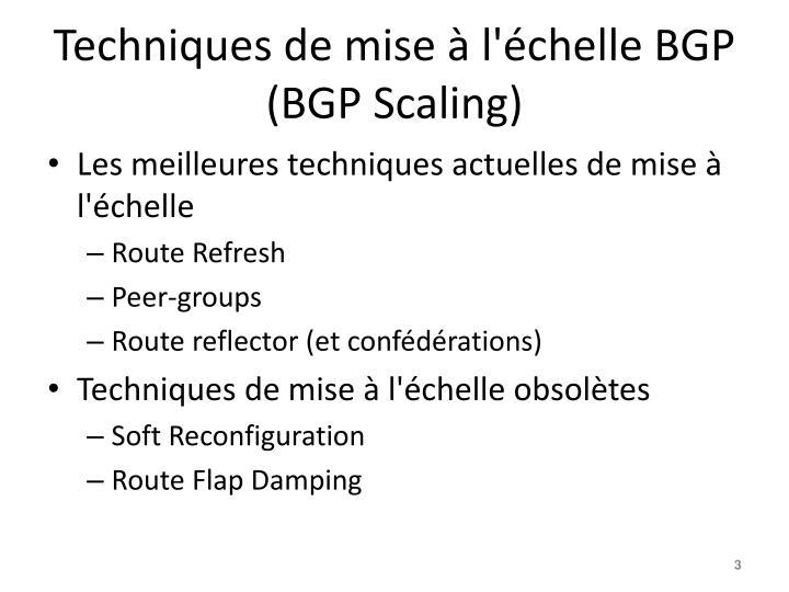 Techniques de mise l chelle bgp bgp scaling1