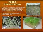poder germinativo