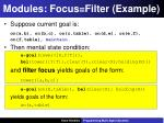 modules focus filter example