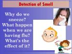why do we sneeze what happen when we are having flu what s the effect of it