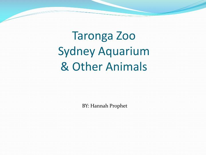 taronga zoo sydney aquarium other animals n.