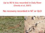 up to 90 loss recorded in daly river doody et al 2007 no recovery recorded in nt or qld