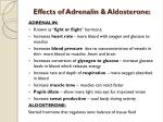 effects of adrenalin aldosterone