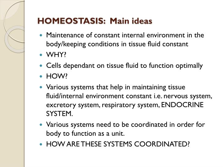 Homeostasis main ideas