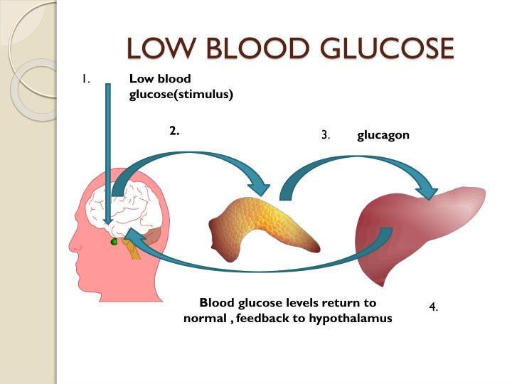 LOW BLOOD GLUCOSE