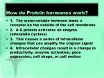 how do protein hormones work
