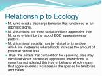 relationship to ecology