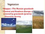 vegetation1