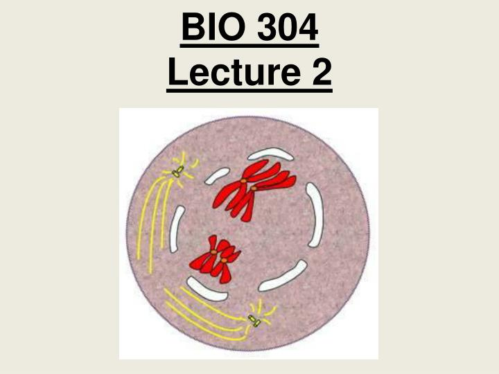 bio 304 lecture 2 n.