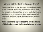 w here did the first cells come from