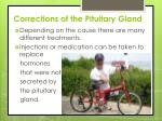 corrections of the pituitary gland