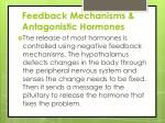 feedback mechanisms antagonistic hormones