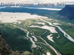 fluviala processer avlagring delta