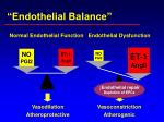 endothelial balance1