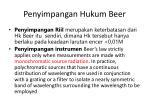 penyimpangan hukum beer
