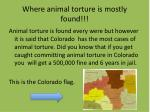 where animal torture is mostly found