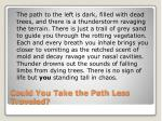 could you take the path less traveled2