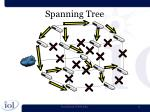 spanning tree2
