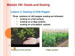 module viii seeds and sowing2