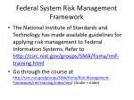federal system risk management framework
