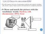12 6 12 cells to organism edu