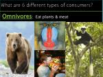 what are 6 different types of consumers2